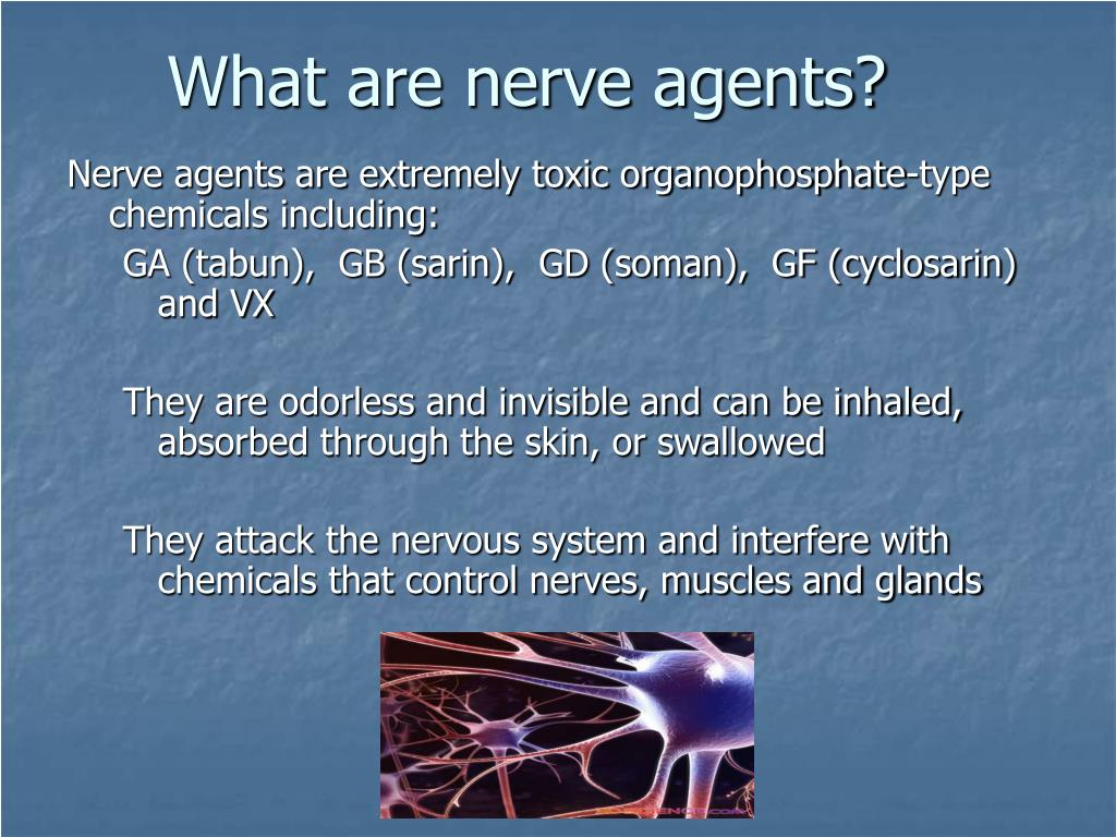 What are nerve agents?