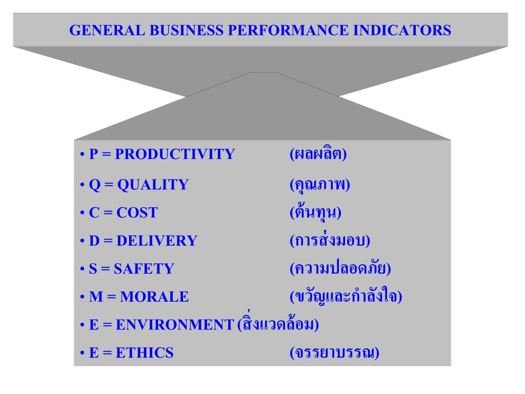 GENERAL BUSINESS PERFORMANCE INDICATORS