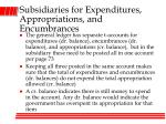 subsidiaries for expenditures appropriations and encumbrances