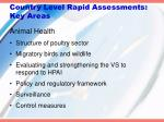country level rapid assessments key areas1