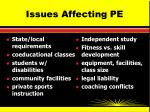 issues affecting pe