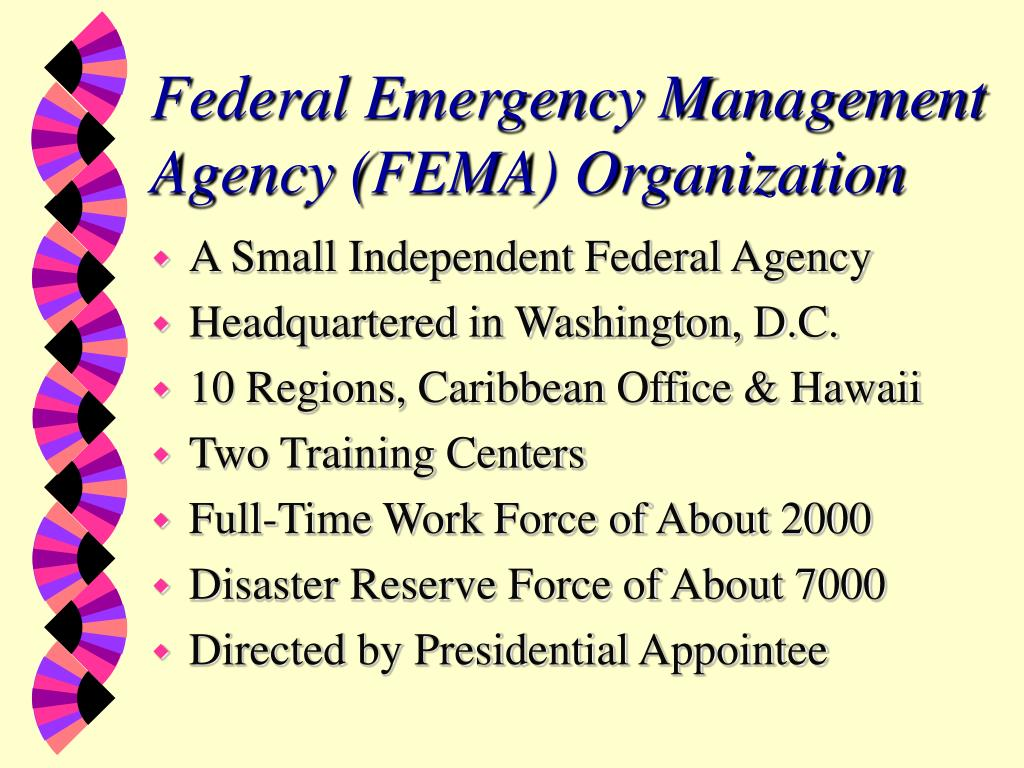 Federal Emergency Management Agency (FEMA) Organization