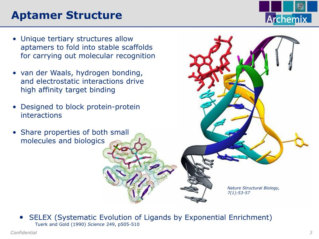 Nature Structural Biology, 7(1):53-57