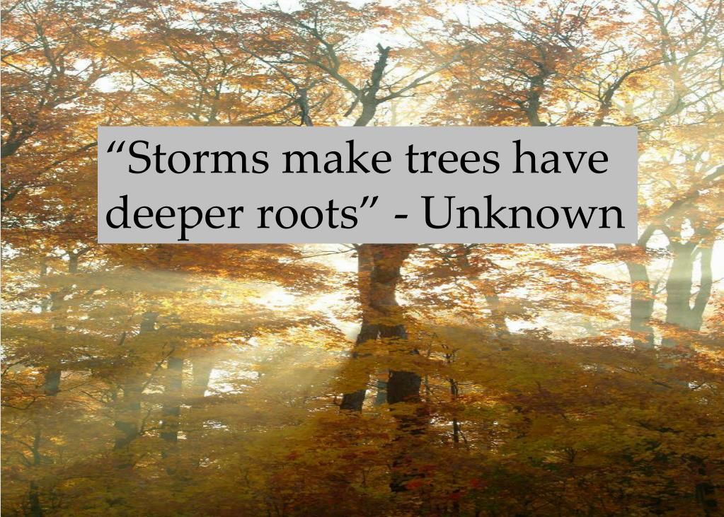 """""""Storms make trees have deeper roots"""" - Unknown"""