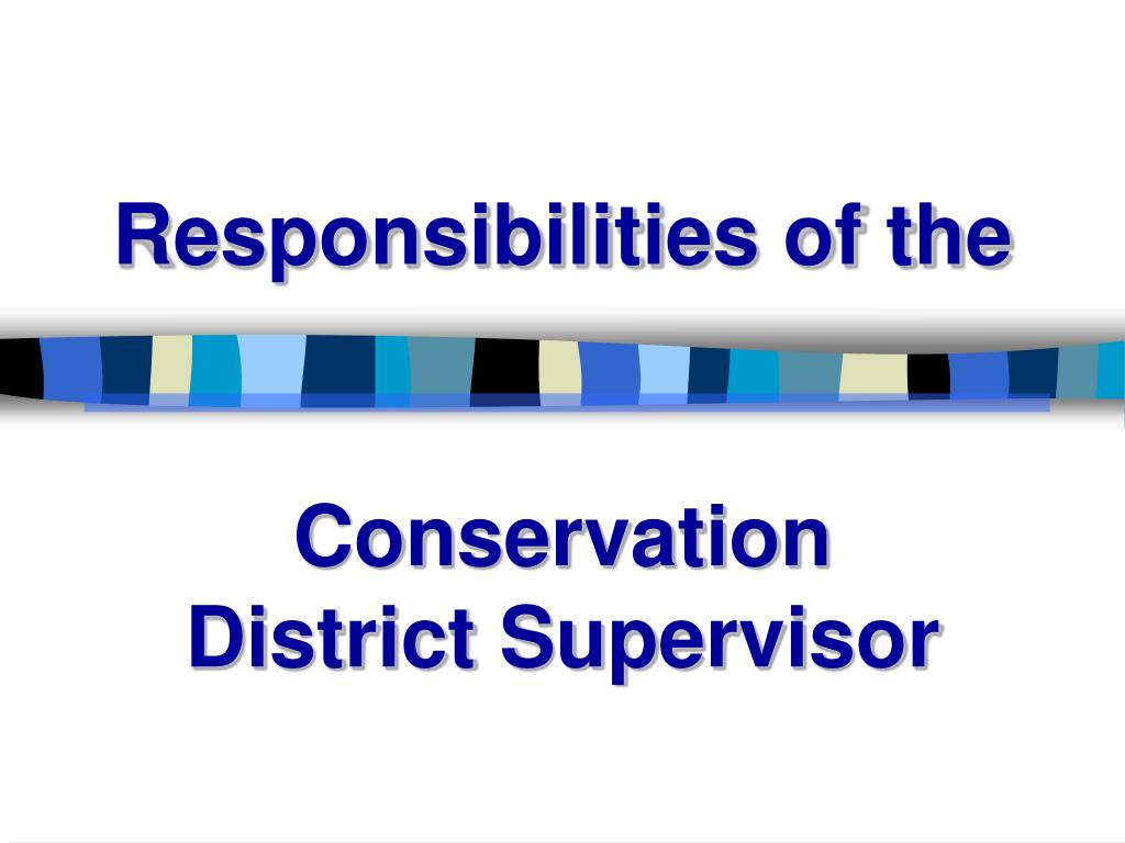 Responsibilities of the