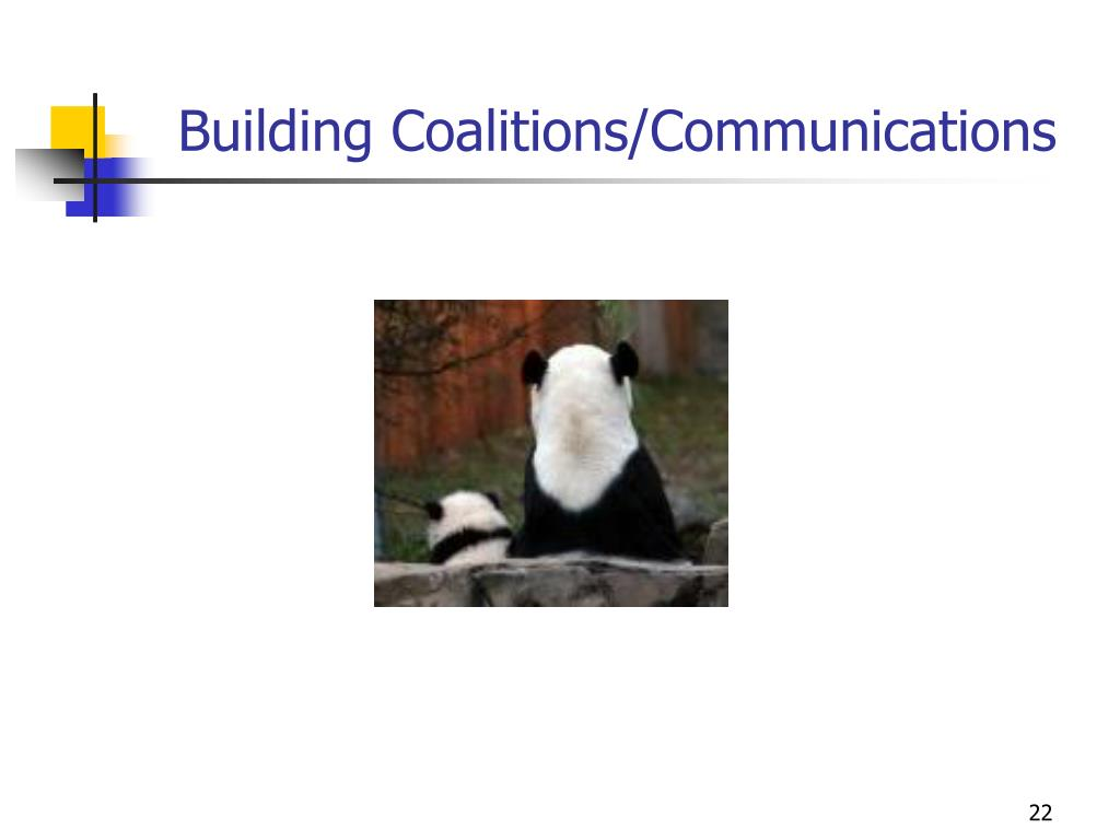 Building Coalitions/Communications