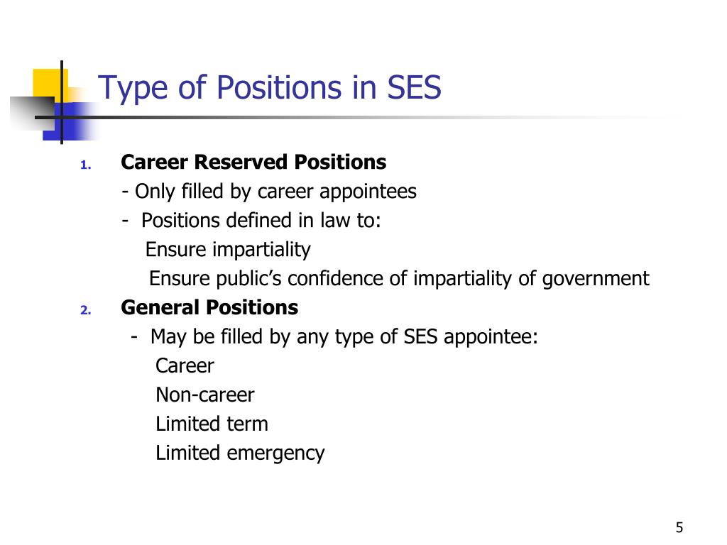Type of Positions in SES