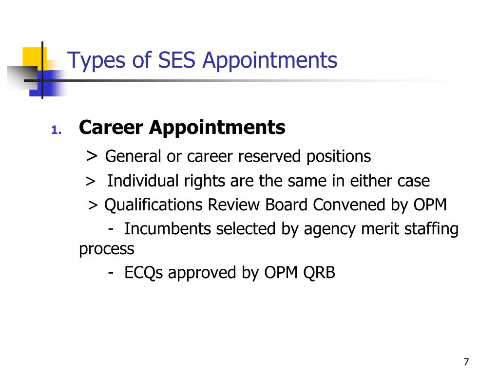 Types of SES Appointments