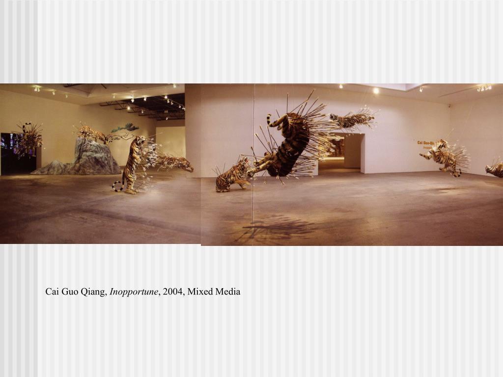 Cai Guo Qiang,