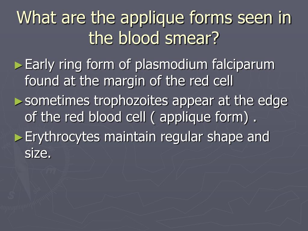 What are the applique forms seen in the blood smear?