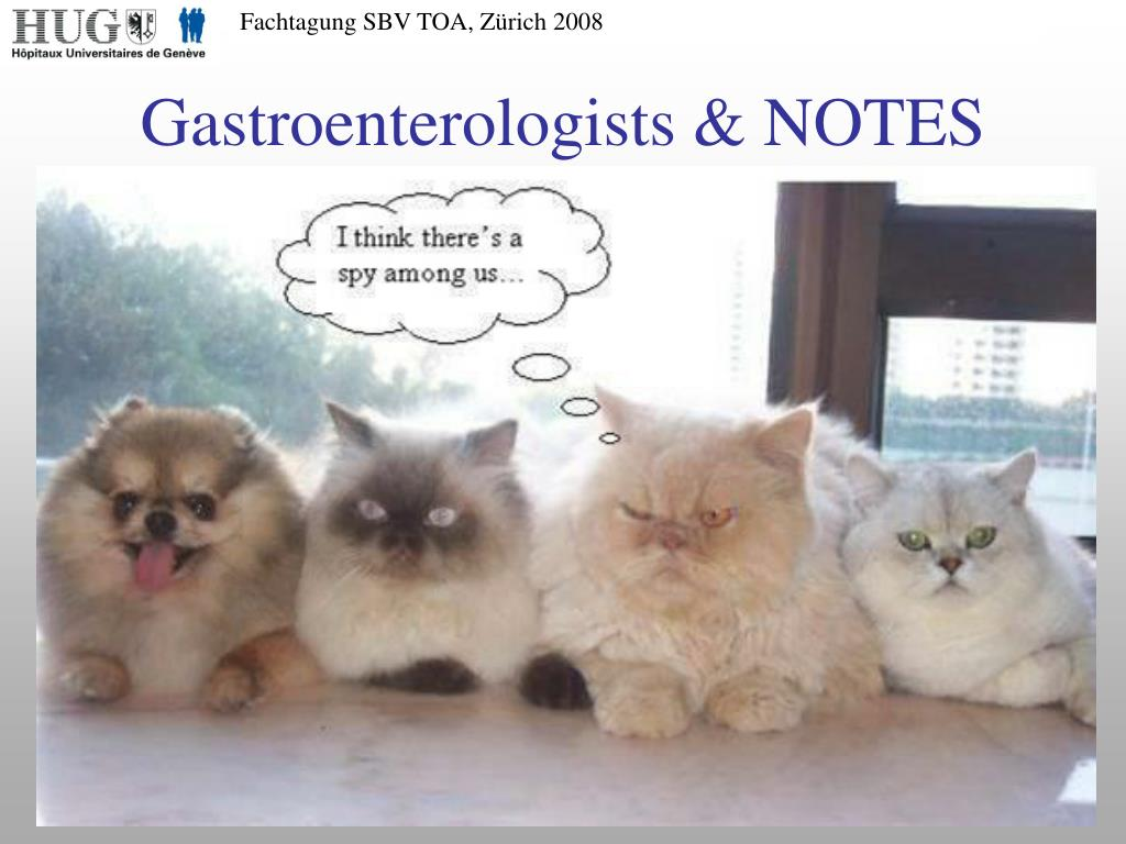 Gastroenterologists & NOTES
