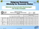 subgroup summary ethnicity for economic status