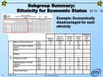 subgroup summary ethnicity for economic status45