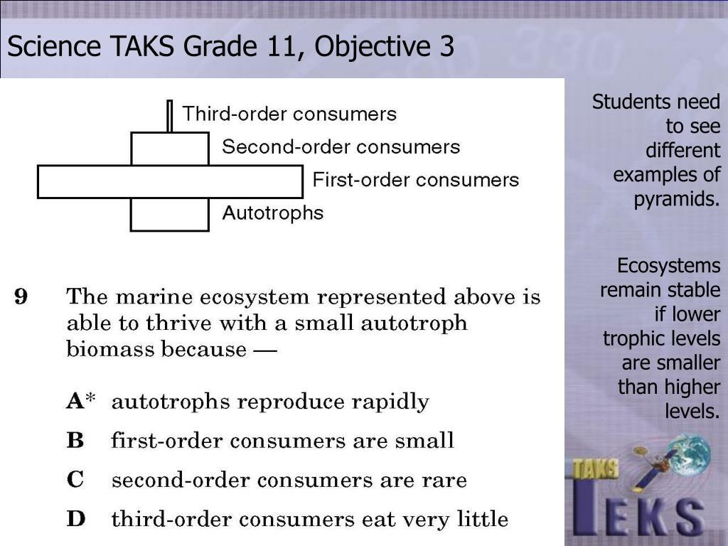 Science TAKS Grade 11, Objective 3