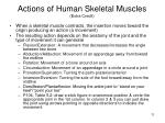 actions of human skeletal muscles extra credit
