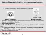 les conflits entre indications g ographiques et marques30