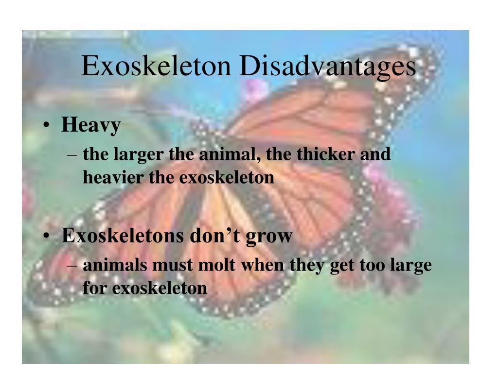 Exoskeleton Disadvantages
