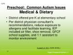 preschool common autism issues medical dietary25