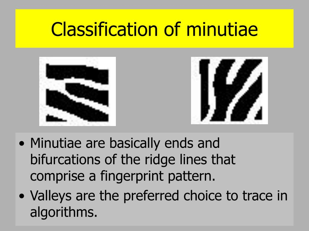 Classification of minutiae