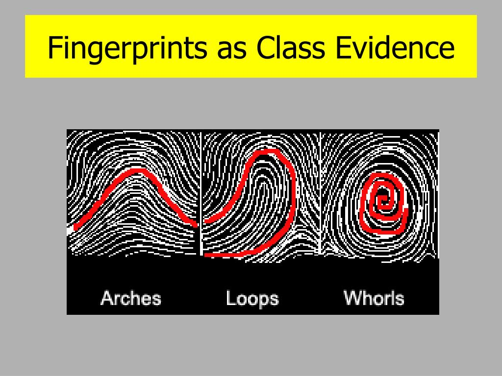 Fingerprints as Class Evidence