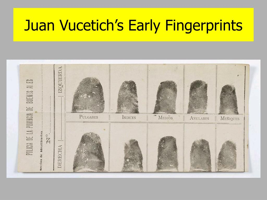 Juan Vucetich's Early Fingerprints