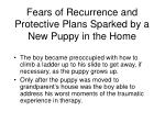 fears of recurrence and protective plans sparked by a new puppy in the home