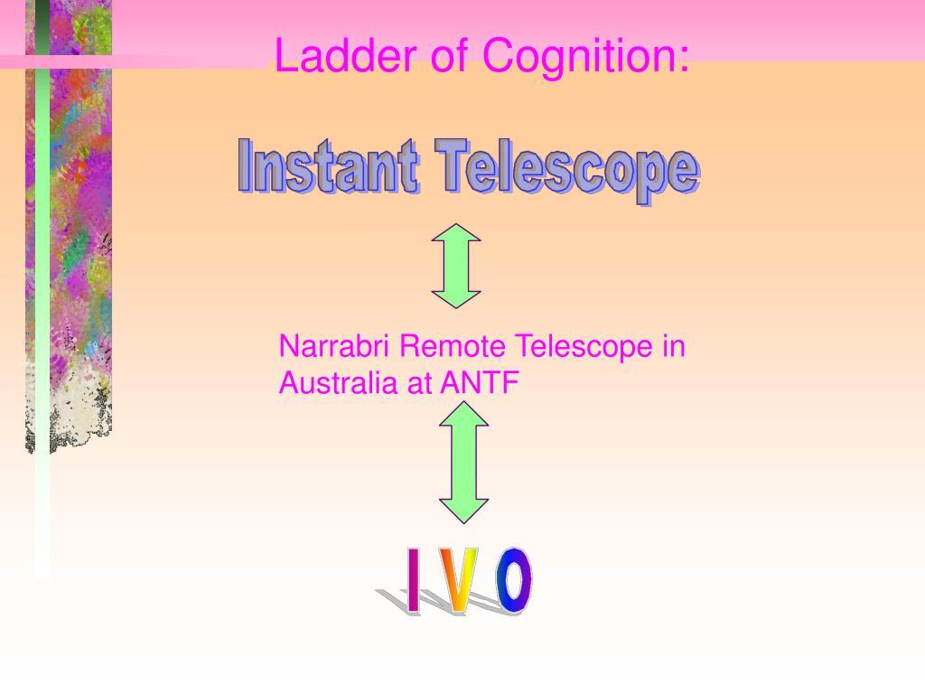 Ladder of Cognition: