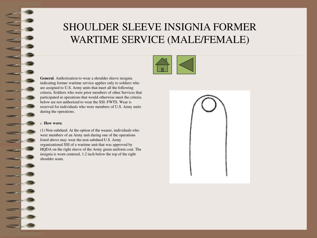 SHOULDER SLEEVE INSIGNIA FORMER WARTIME SERVICE (MALE/FEMALE)