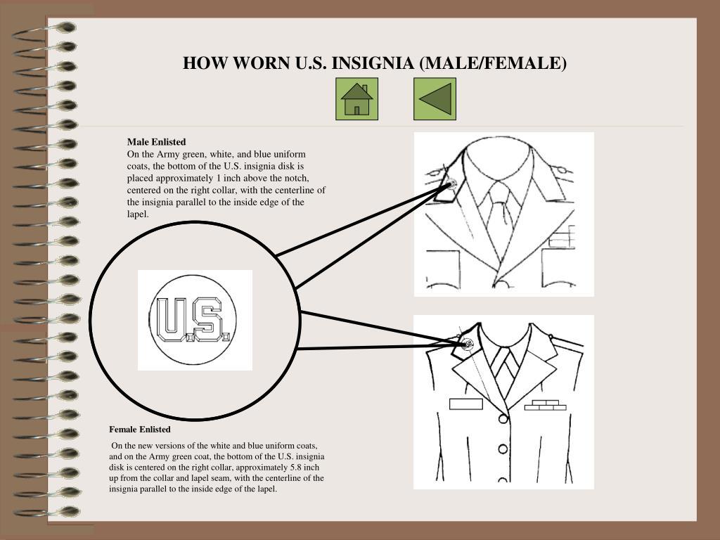 HOW WORN U.S. INSIGNIA (MALE/FEMALE)