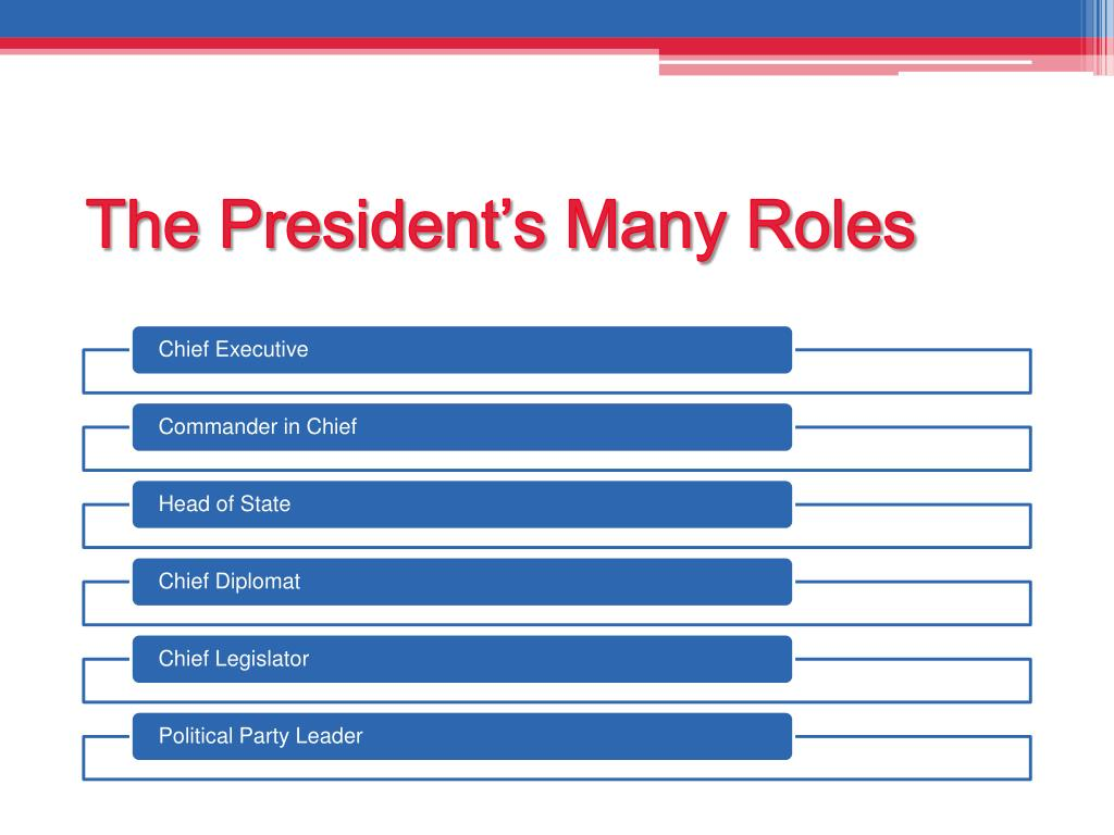 The President's Many Roles