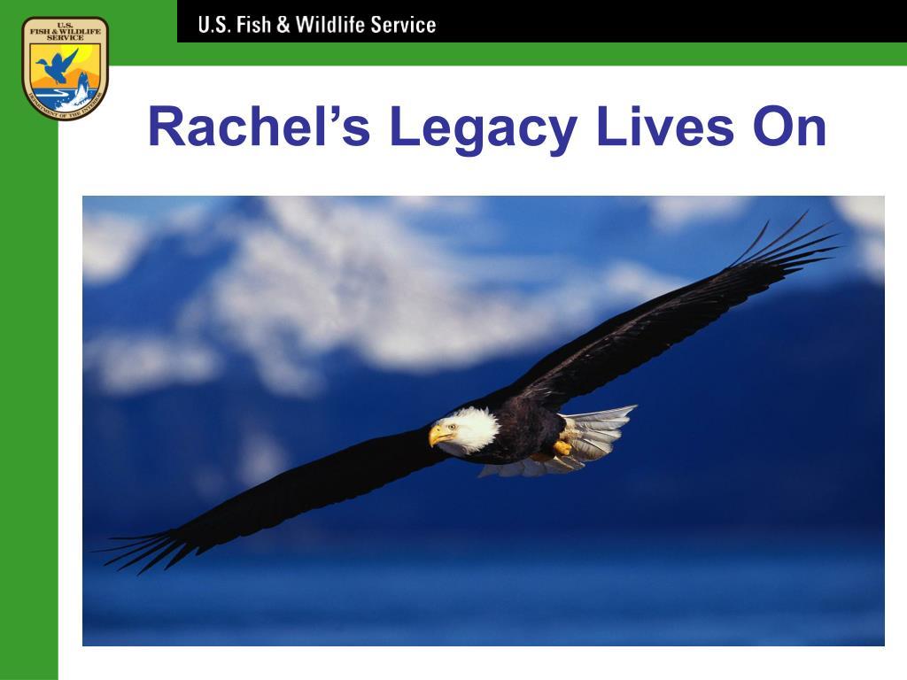 Rachel's Legacy Lives On