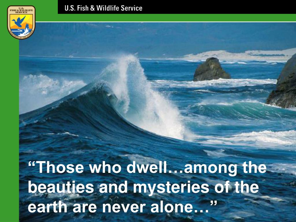 """""""Those who dwell…among the beauties and mysteries of the earth are never alone…"""""""