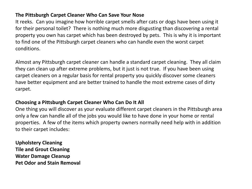 The Pittsburgh Carpet Cleaner Who Can Save Your Nose