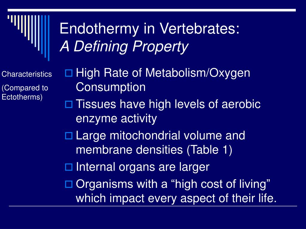 Endothermy in Vertebrates: