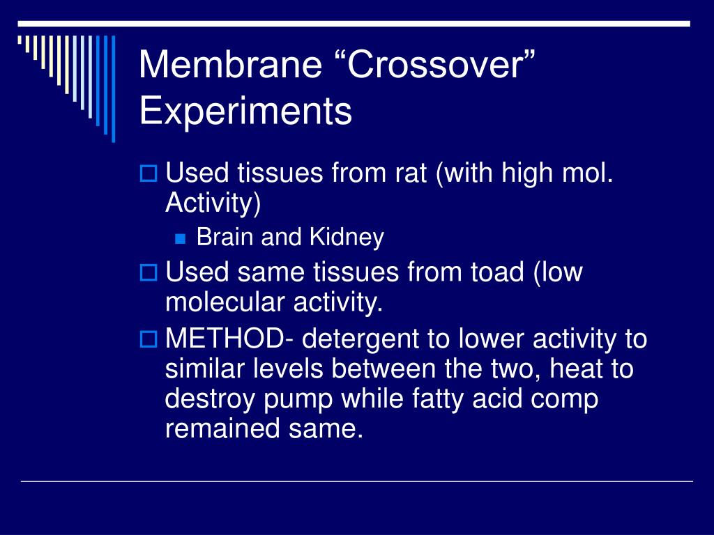 "Membrane ""Crossover"" Experiments"