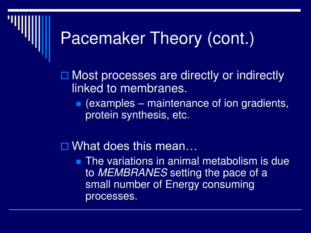 Pacemaker Theory (cont.)