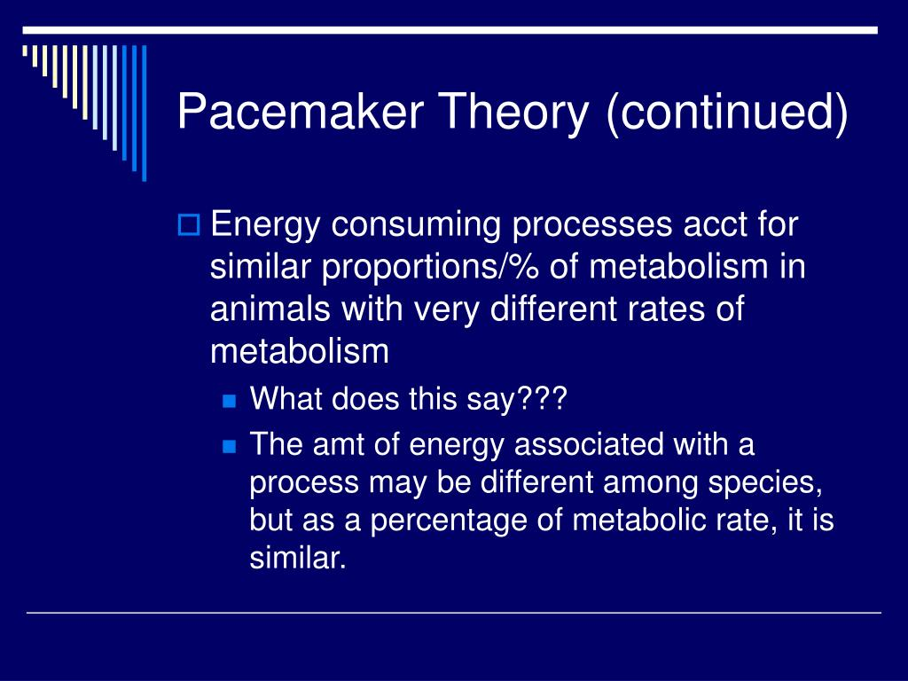 Pacemaker Theory (continued)