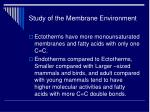 study of the membrane environment