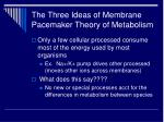 the three ideas of membrane pacemaker theory of metabolism