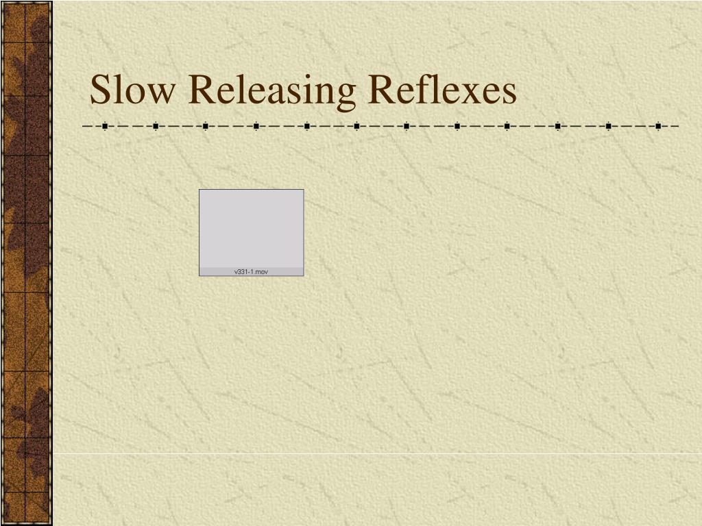 Slow Releasing Reflexes