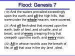flood genesis 7