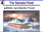 the genesis flood