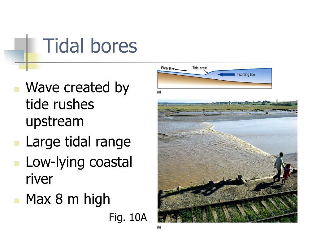 Tidal bores