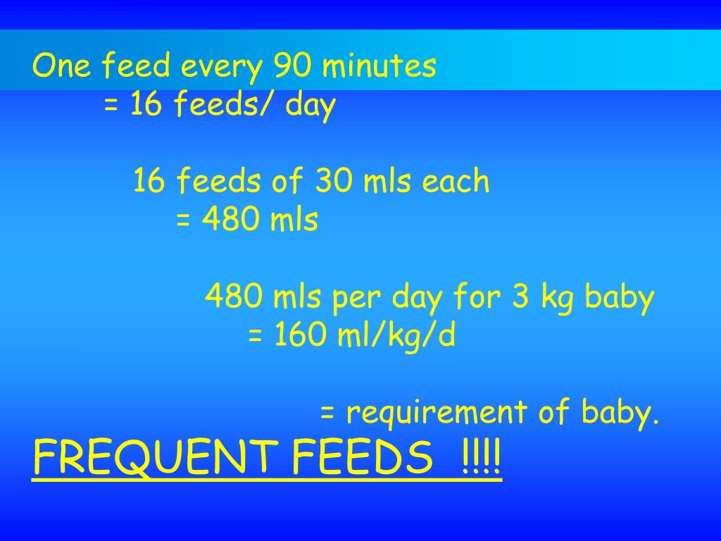 One feed every 90 minutes