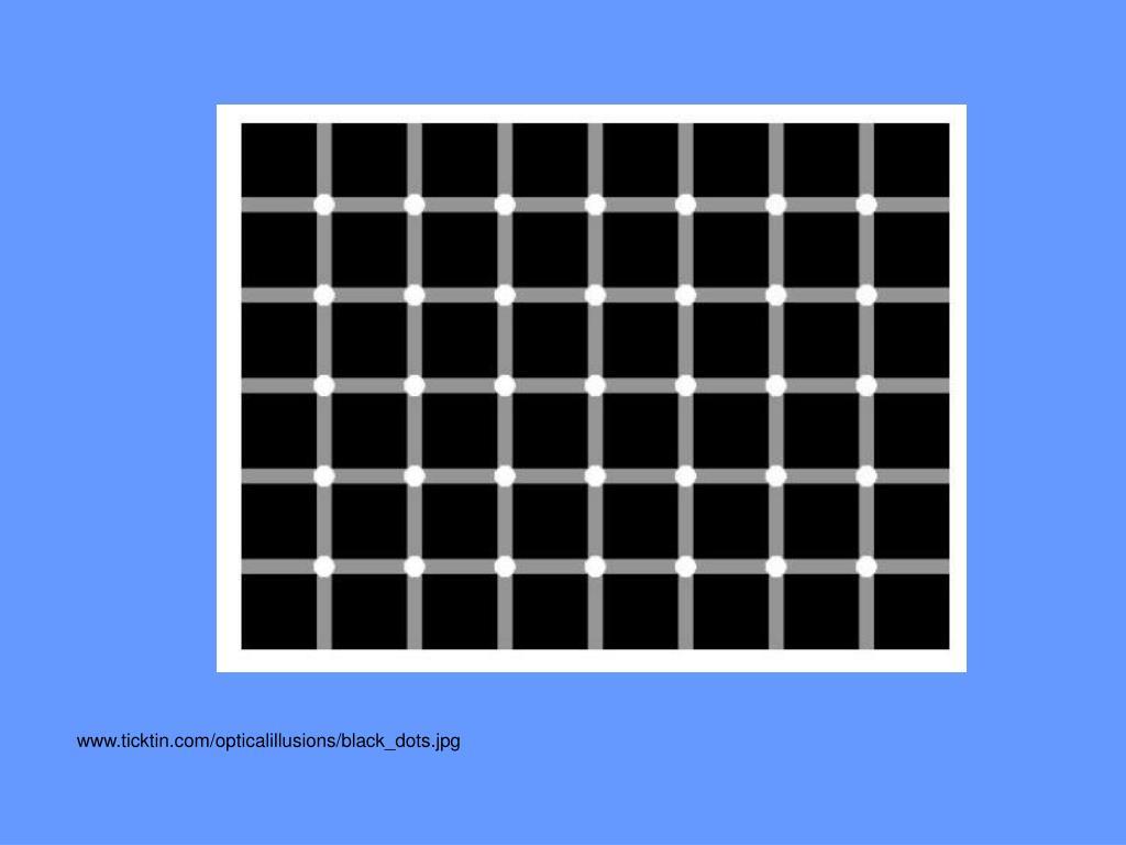 www.ticktin.com/opticalillusions/black_dots.jpg
