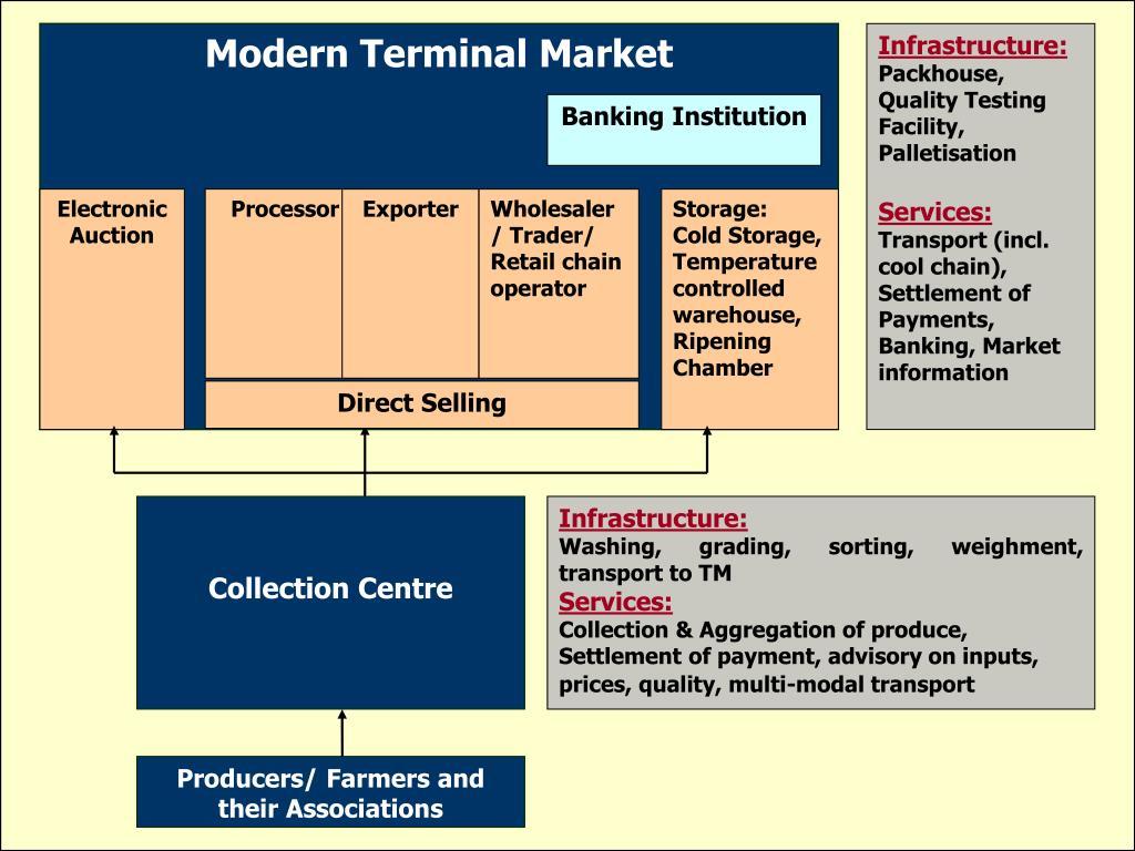 Modern Terminal Market
