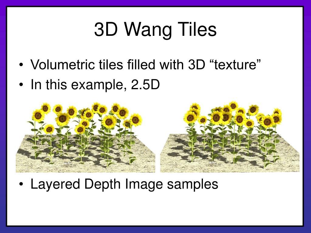 3D Wang Tiles