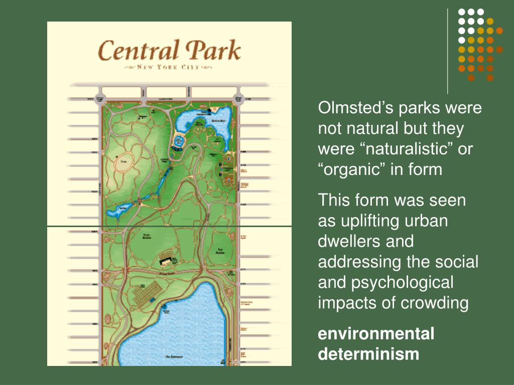 "Olmsted's parks were not natural but they were ""naturalistic"" or ""organic"" in form"