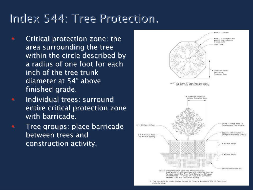 Index 544: Tree Protection.