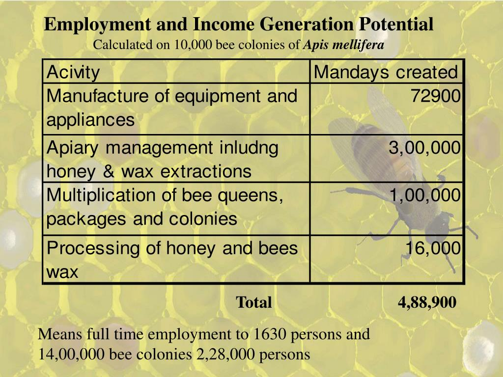 Employment and Income Generation Potential